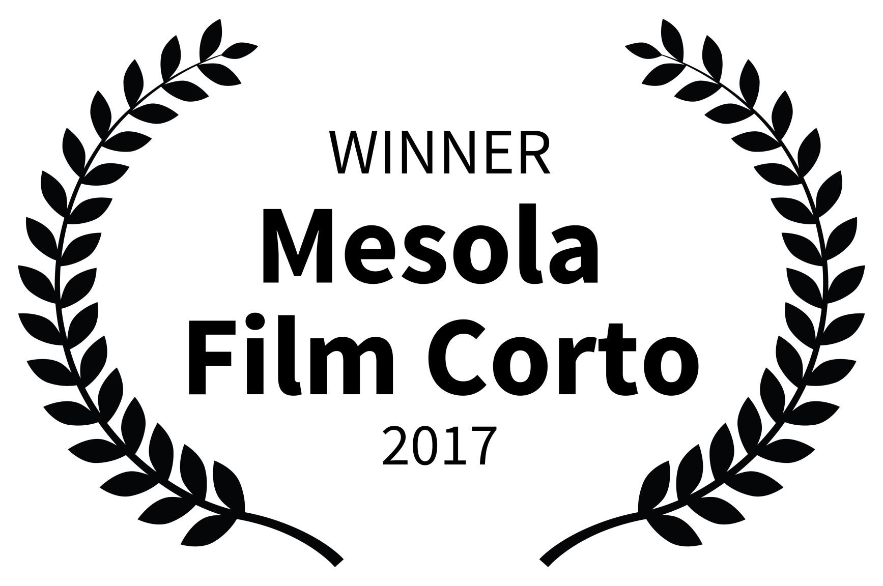 WINNER - Mesola Film Corto - 2017